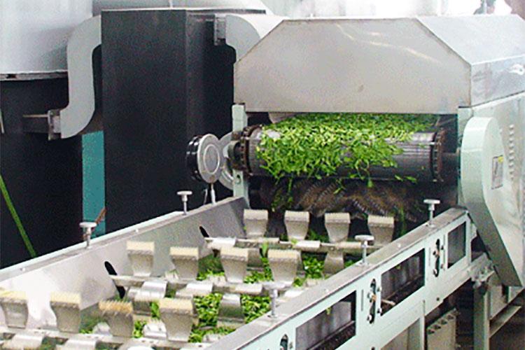 Steamed & Air Dried Japanese Green Tea